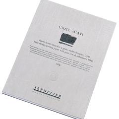 álbumes carte d art (d340)